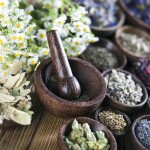 The ancient Chinese medicine herbs and infusions ** Note: Shallow depth of field